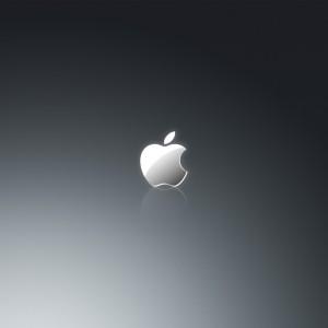 bravo whiskey apple logo in grey ipad wallpaper