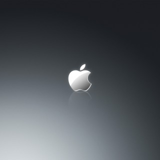 bravo whiskey apple logo in grey ipad wallpaper