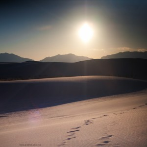 rob sheridan - desert and sun ipad wallpaper
