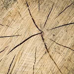 brent leimenstall - chopped wood texture ipad wallpaper