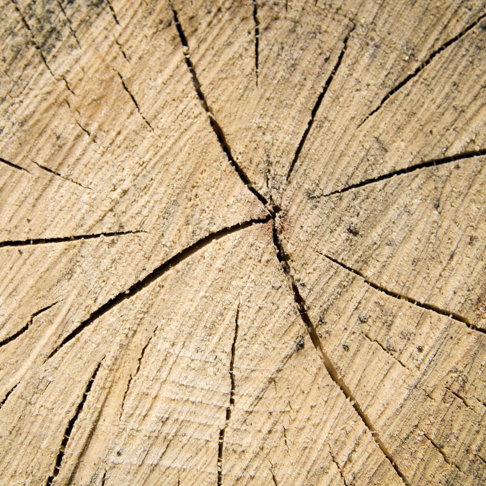brent leimenstall - chopped wood texture ipad wallpaper