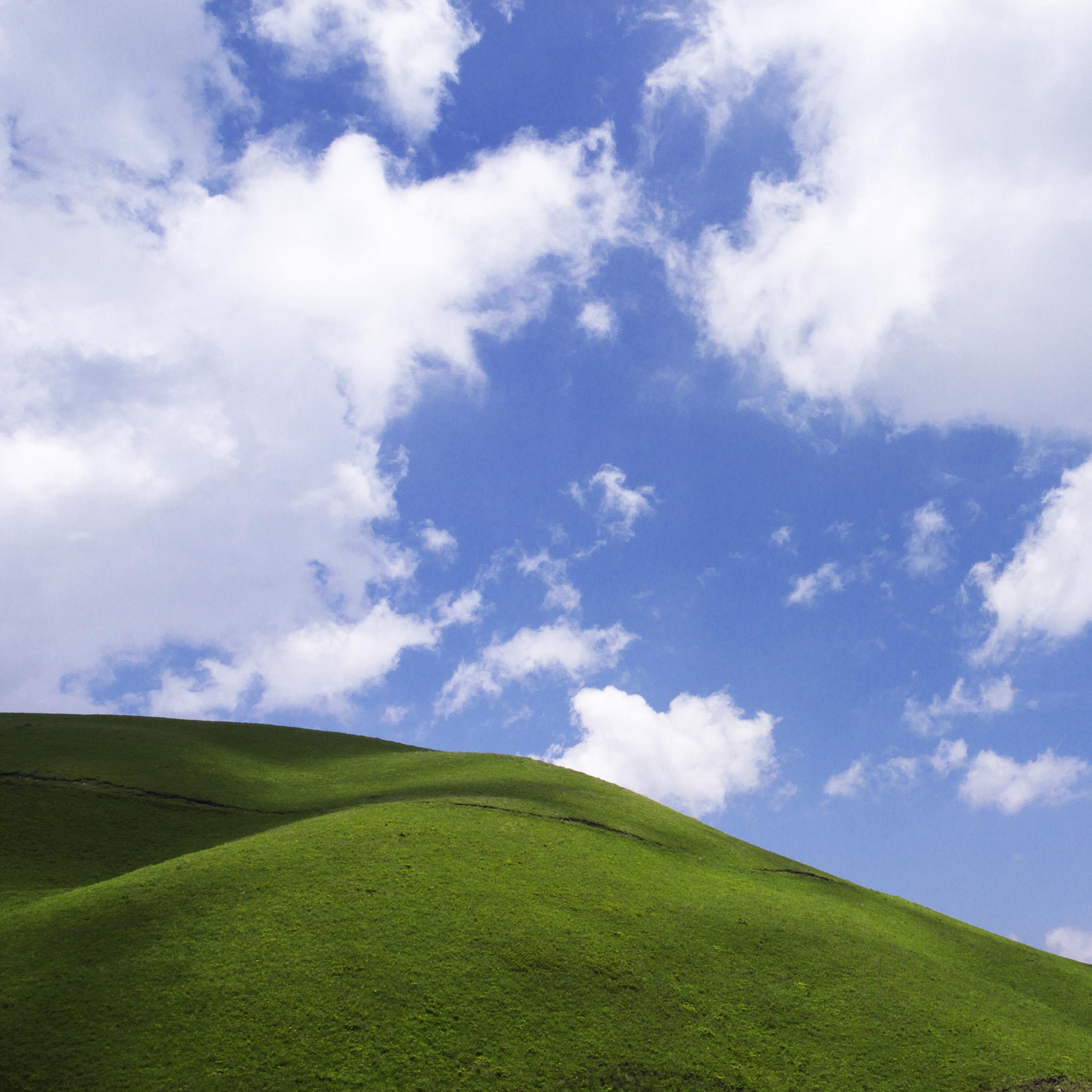 chshii - green grass sky ipad wallpaper