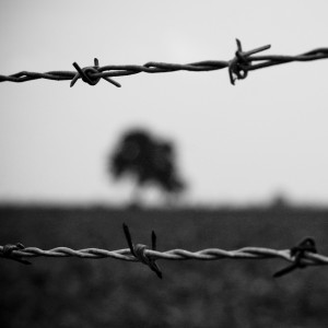 code poet - barbed wire ipad wallpaper