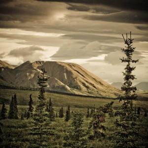 code poet - sur le bord mountain landscape ipad wallpaper