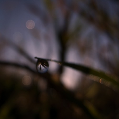 Blurry water drop at the dawn iPad Wallpaper