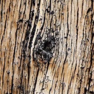 jared - wood texture ipad wallpaper