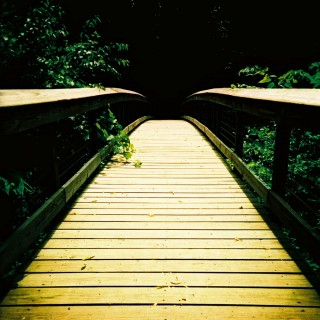 kevin dooley - wood footbridge ipad wallpaper