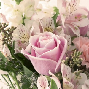 liz west - pastel rose bouquet ipad wallpaper