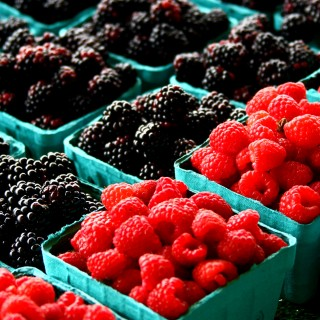 liz west - red and black berries ipad wallpaper