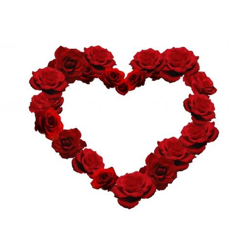 liz west - rose heart ipad wallpaper