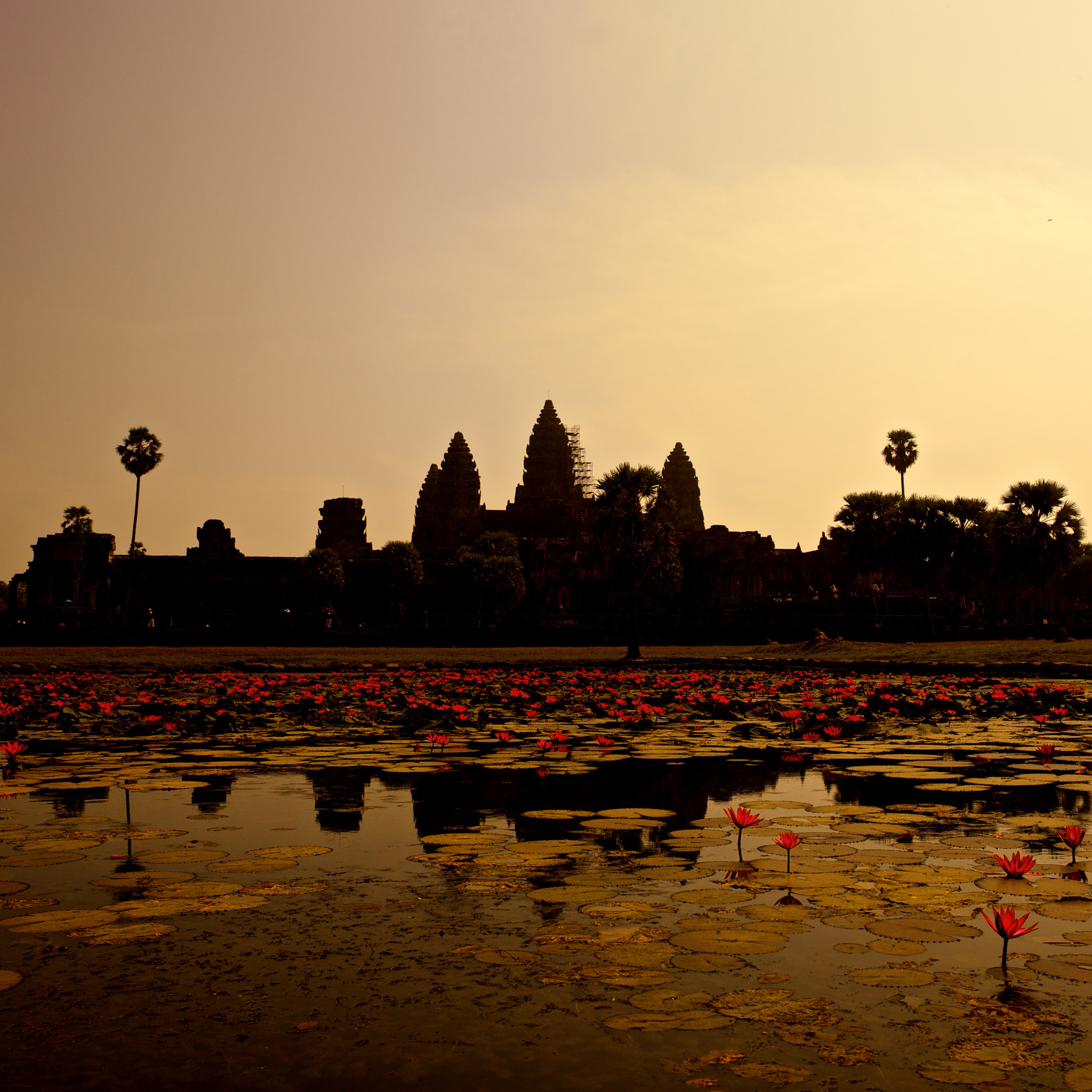 mark sebastian - cambodia angkor wat ipad wallpaper