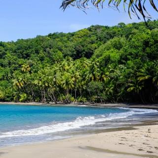 matthias ripp - tropical beach landscape ipad wallpaper