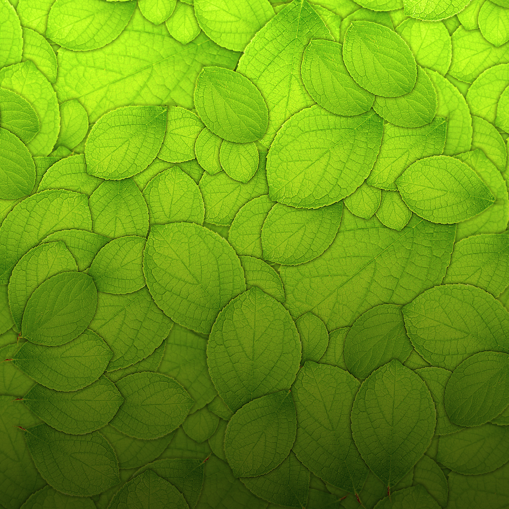 mrforscreen - green leaves texture ipad wallpaper