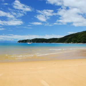 piotr zurek - abel tasman beach ipad wallpaper