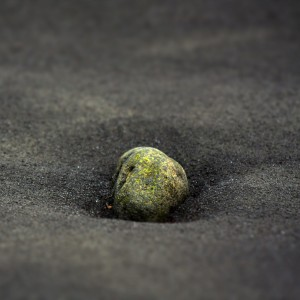 robbie - in black sand ipad wallpaper