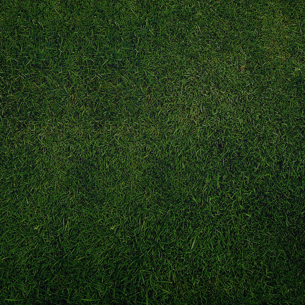sniperyu - plain green grass texture ipad wallpaper