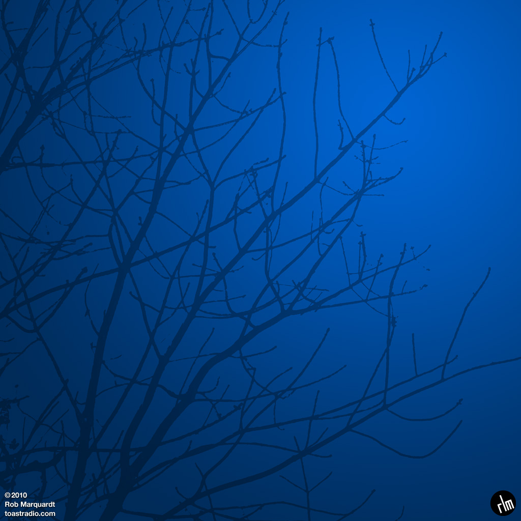 sometoast - branches in blue ipad wallpaper