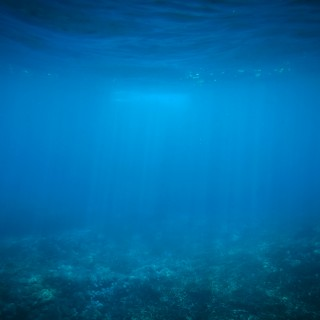 stefanus martanto - underwater blue ipad wallpaper