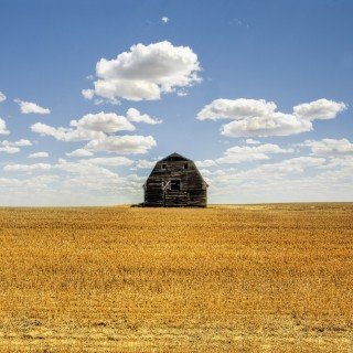 stuck in customs - old barn on a field ipad wallpaper